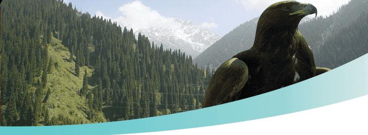 Reisen nach Kasachstan, Visabesorgung, Flüge, Hotels, Zugtickets, Transfers, Guides