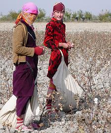 Visum Usbekistan Baumwolle